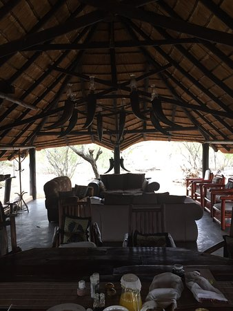 Manyeleti Game Reserve, Sudáfrica: photo3.jpg