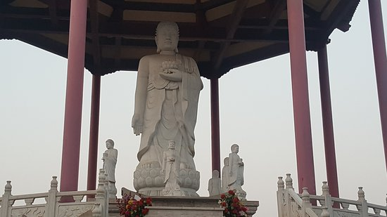 庆云县照片