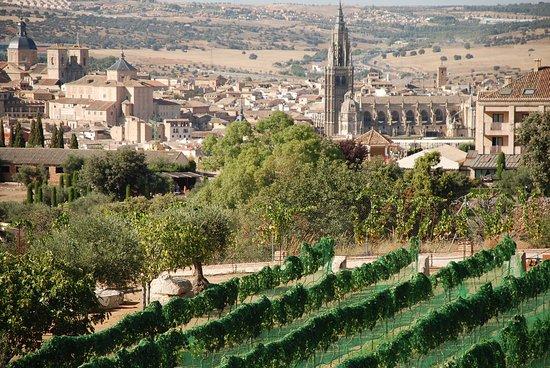 imagen Restaurante Vinedos Cigarral Santa Maria en Toledo