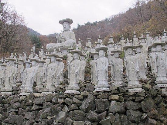 Sacheon