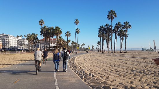 Cycling Venice Beach With Bikes Hired From Hotel Reception