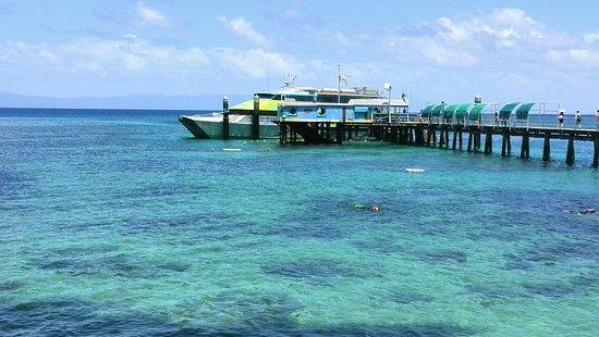 Green Island, أستراليا: IMG_20161022_110542_large.jpg