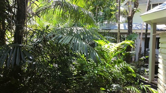 Green Island, أستراليا: IMG_20161018_140347_large.jpg