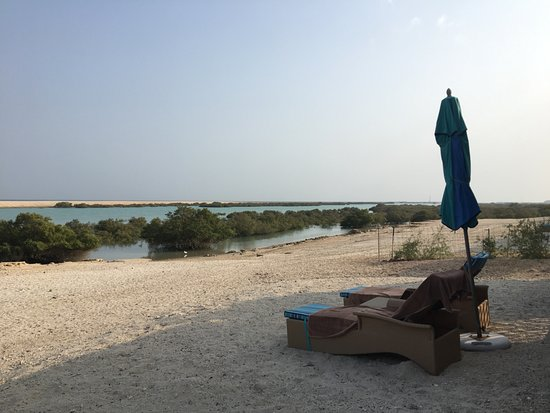 Sir Bani Yas Island Photo