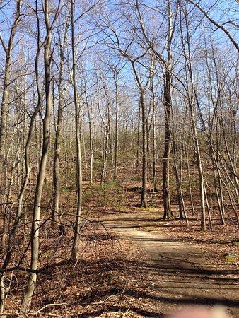 Cross River, Nowy Jork: Blue Trail at Ward Pound
