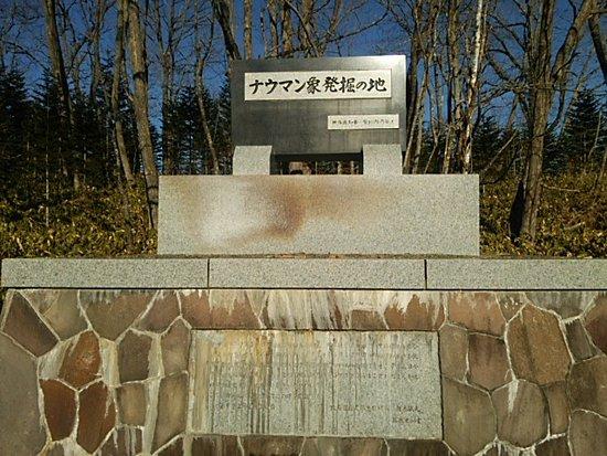 Makubetsu-cho, Japan: DSC_0674_large.jpg