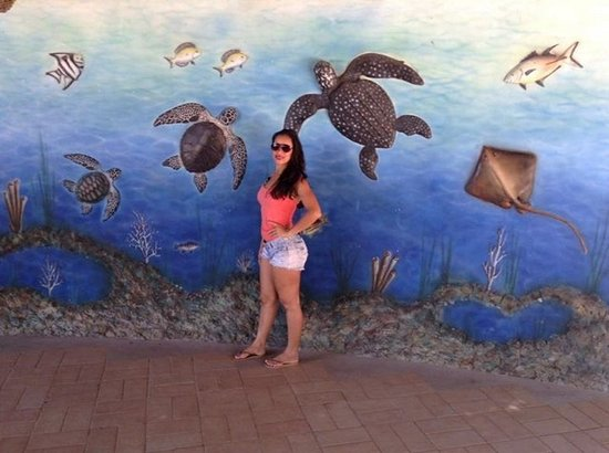 Aracaju Aquarium - Tamar: 03001d5e_large.jpg