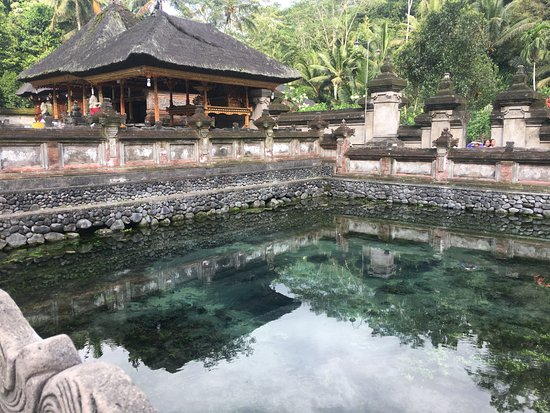 Bali Wayan Private Tour & Driver