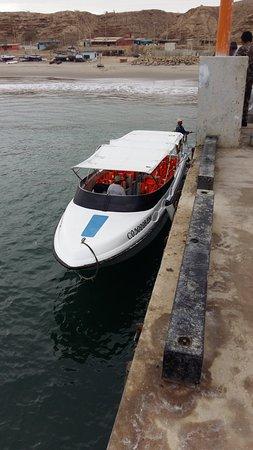Organos, Περού: vehiculos de pacifico adventures para avistamiento de ballenas