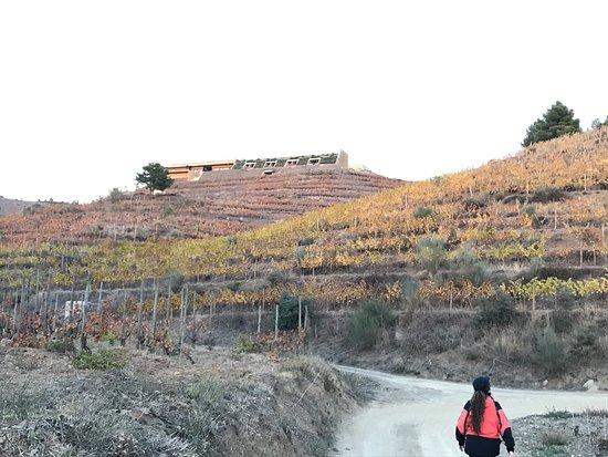 Gratallops, Spain: photo1.jpg