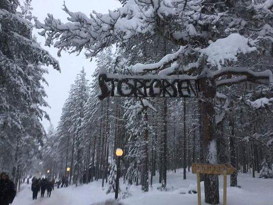 Norrbotten County, Sweden: FB_IMG_1480177264590_large.jpg