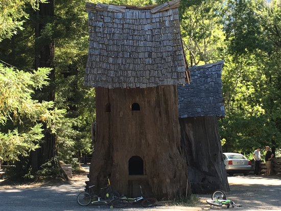 Weott, CA: For small people