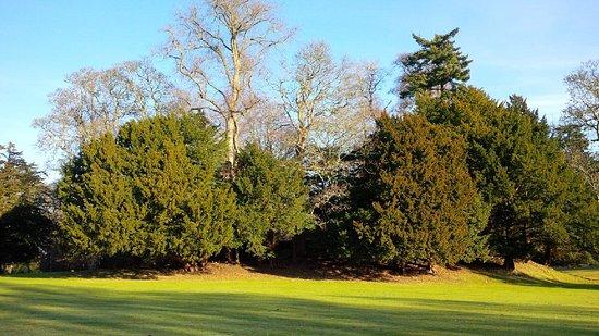 Perth, UK: Beautiful grounds