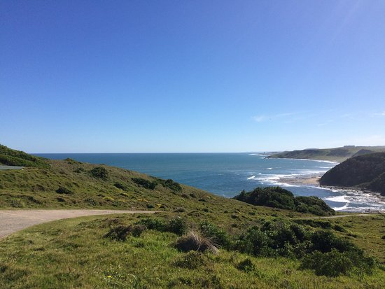 Morgan's Bay, South Africa: View of beach and reserve road