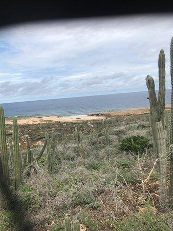 Paradera, Aruba: photo7.jpg