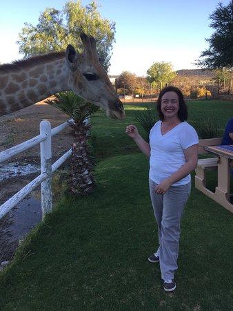 Chandelier Game Lodge & Ostrich Show Farm: photo0.jpg