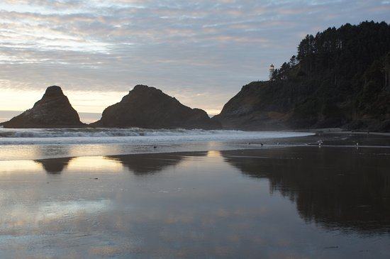 Heceta Head Lighthouse Bed and Breakfast: Beach below the B&B