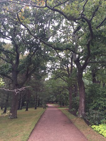Annapolis Royal Historic Gardens: Walking quietly in a small forest