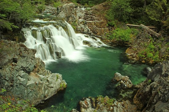 Sawmill Falls  - Picture of Willamette National Forest, Mill