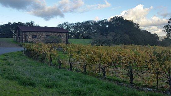 Glen Ellen, Californie : Jack London State Historic Park