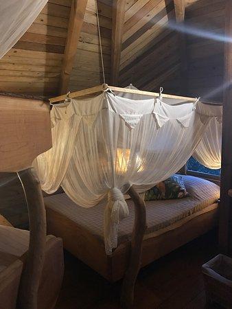 Vieux-Habitants, Guadalupe: photo1.jpg