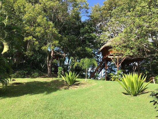 Vieux-Habitants, Guadalupe: photo5.jpg