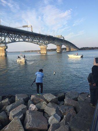 Yorktown, VA: She caught so many fish!