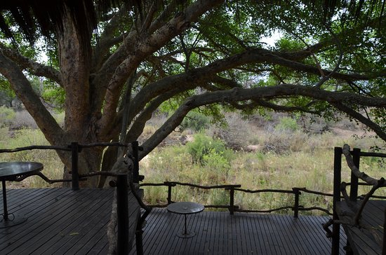 Makalali Private Game Lodge: Blick aus dem Speisesaal unseres Camps