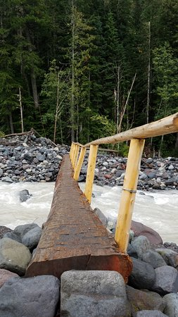 Ashford, WA: Crossed bridge over Nisqually River to Carter & Madcap Falls