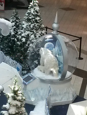 Strongsville, OH: Polar bears in place of presents.