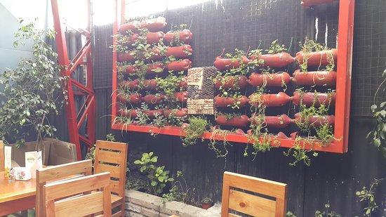 El jard n secreto santiago fotos n mero de tel fono y restaurante opiniones tripadvisor - Restaurante el jardin secreto ...