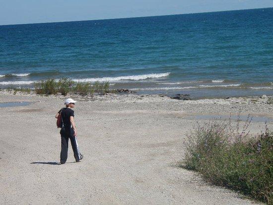 Blue Mountains, Canada: Stroll on the beach