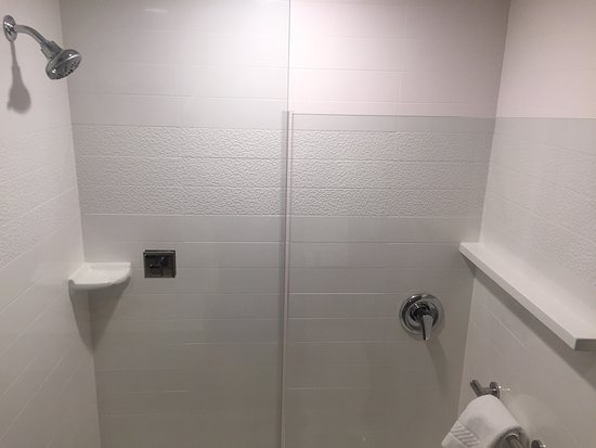Martinsburg, Virginia Occidental: King Suite shower