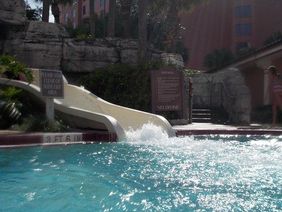Caribe Royale All Suite Hotel & Convention Center: tobogan en la picina