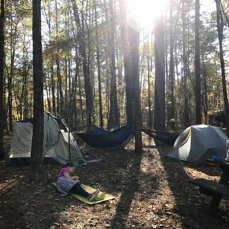 Ruston, LA: We camped here over Thanksgiving. Perfect spot for an active family.