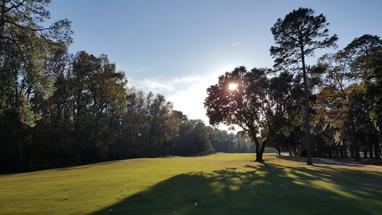 Hilton Head National: Actual photo from my round. Unreal photo opportunities on every hole.