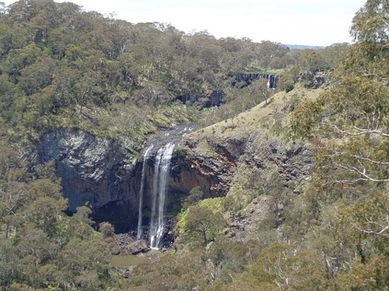Waterfall Way Photo