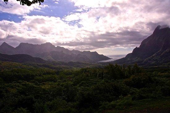 "Moorea Explorer: rechts ""Mont Rotui"" (899 m) und ""Baie d'Opunohu"" von Aussichtspunkt Belvédère"
