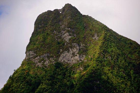 Moorea Explorer: Mount Moua Puta