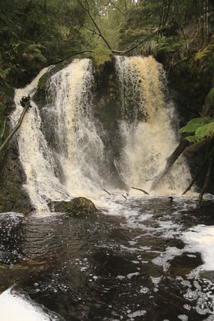 Strahan, Australia: Hogarth Falls