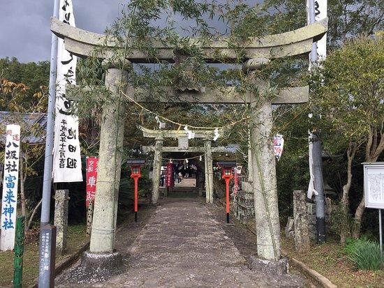 Yasakasha Shine