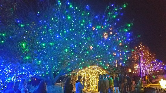 Denver Botanic Gardens: More Festival Of Lights