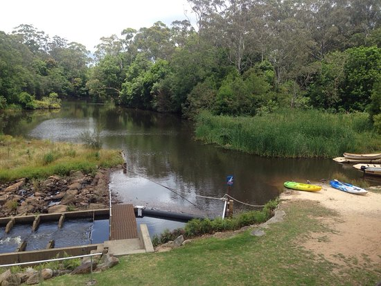 Wyong, Australia: photo2.jpg