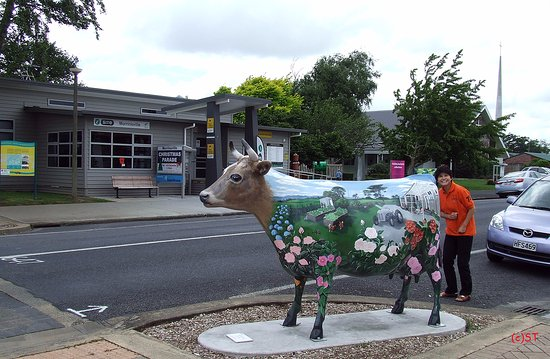 Morrinsville, New Zealand: I-Site and Cow