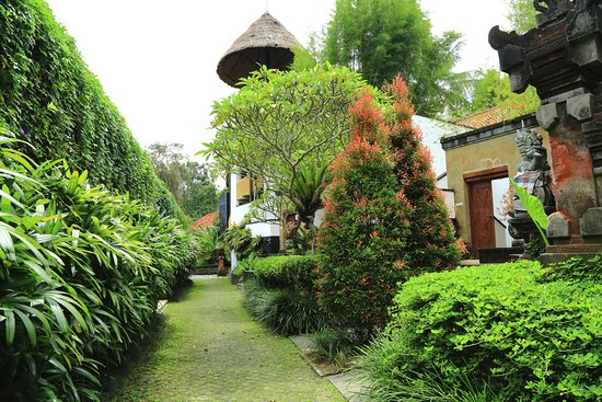 Ubud Green Photo