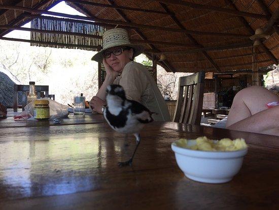 Cape Maclear, Malawi: photo7.jpg