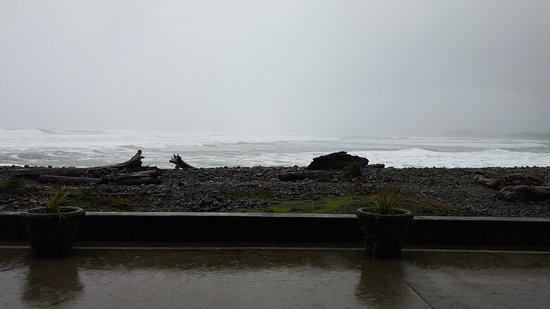 Lanai at the Cove: 1105161535_large.jpg
