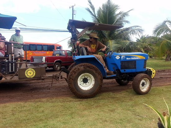 Kahuku, HI: loading up the guests for a farm tour