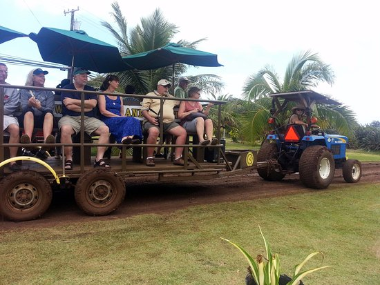 Kahuku, Hawaï: going on a farm tractor tour
