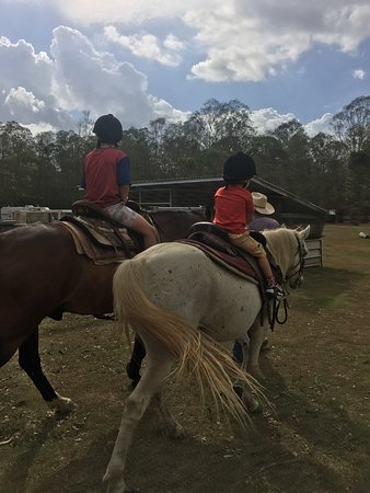 Cobb & Co Nine Mile Camping Grounds: Horse riding